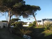 Zevenzicht Estate - Photograph by Leechie Marketing